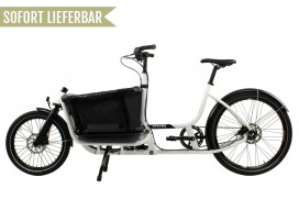 Douze Cycles Urban U1 Traveller 400mm Alfine 8 Weiß