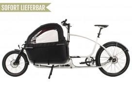 Douze Cycles Family F1  Messenger BIG BOY 600mm Alfine8 Weiß