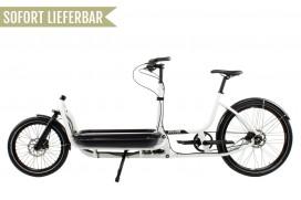 Douze Cycles Urban U1 Traveller 600mm Alfine 8 Weiß
