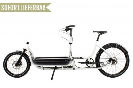 Douze Cycles Urban U1 Traveller Rahmen 600mm Alfine 8 Weiß