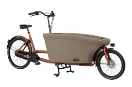 Dolly Bikes Family Nexus 8