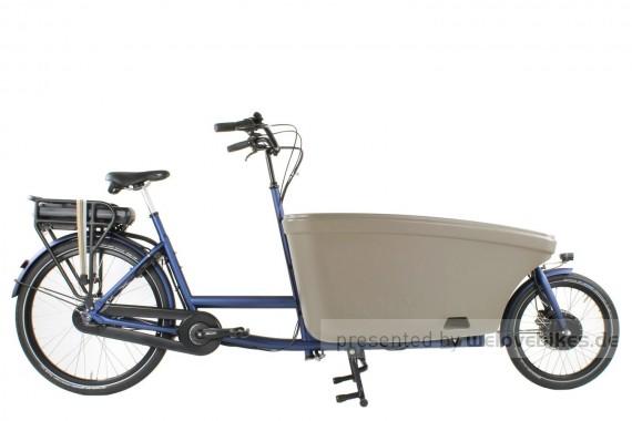 Dolly Bikes Family Nexus 8